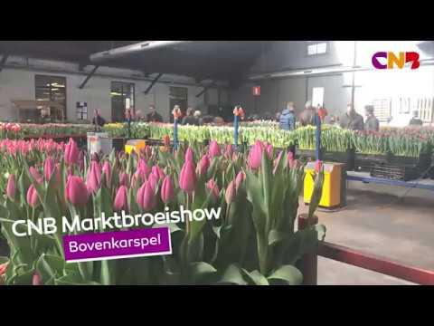 Video still: Marktbroeishow Bovenkarspel
