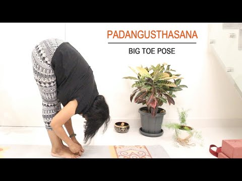 Big Toe Pose | Padangusthasana | Standing Forward Bend | Hamstring Stretch