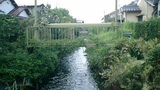 妙覚寺,御成橋,香貫山,千本浜.