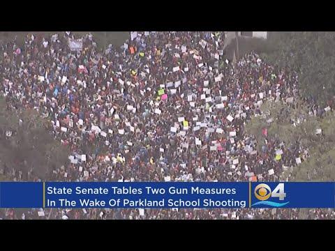 State Senate Tables Gun Bills Amid Parkland Outcry