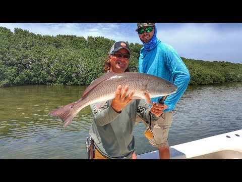Fishing For Pressured Redfish With Live Bait - In The Spread