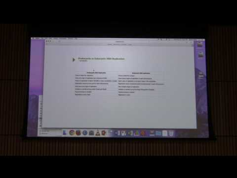 DNA Replication IV - Kevin Ahern's BB 451 Lecture #44 2017
