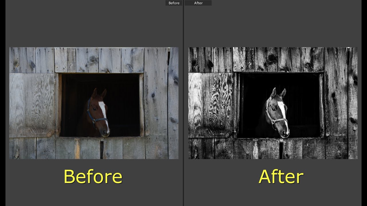 Learn Lightroom 5 - Part 16: Create a Dramatic B&W Imag