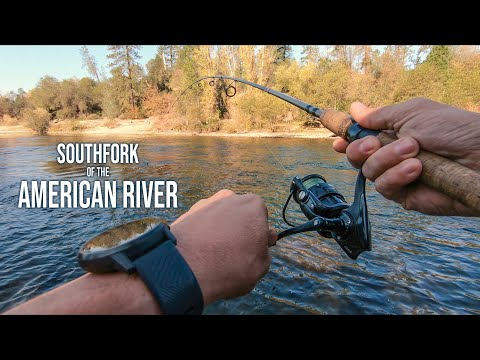 Fishing The South Fork Of The American River