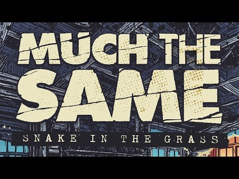 """Much The Same - New Song """"Snake In The Grass"""""""