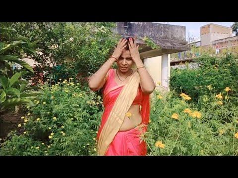 Download Saree Lover 🥻Saree/😍 Male, Female Flower Kya hai/🥰 lungi Style main  Karti Hun/❤️Indian Housewife ♥️