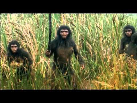 El Primer verdadero ser humano, el Homo habilis