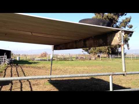Bad Horse Shelter Designs - Bad Gate Placement - Horse Sense - Rick Gore Horsemanship