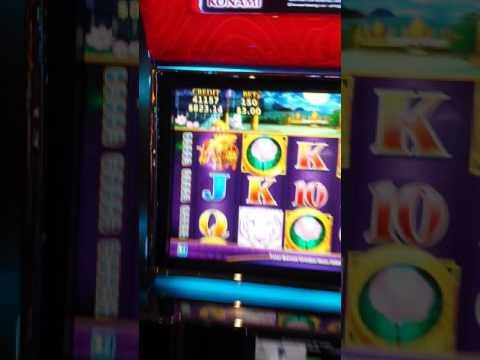 Huge Casino