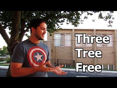 Oque significa trees em ingles