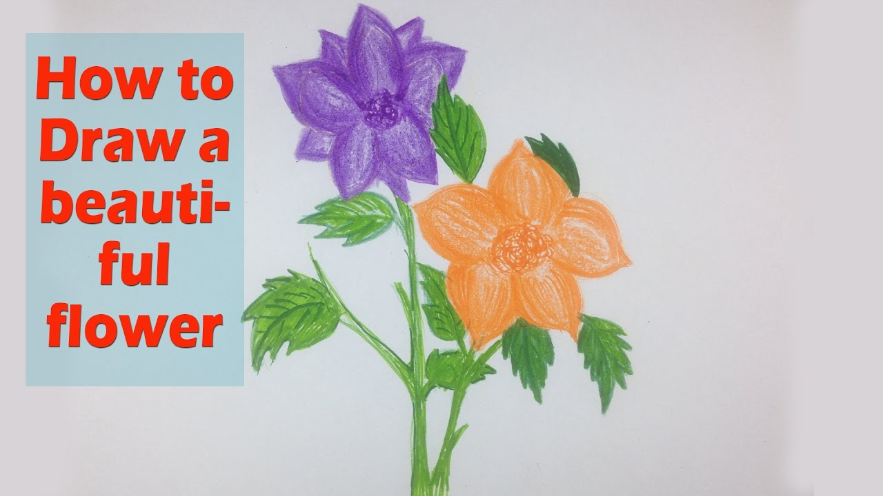 How to draw a beautiful flower fast drawing flower art video how to draw a beautiful flower fast drawing flower art video tutorial izmirmasajfo