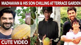 Madhavan & his son Super cute Video chilling at their Terrace Garden   Dad & Son Love   Wetalkiess