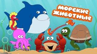 Морские животные Развивающее видео для детей
