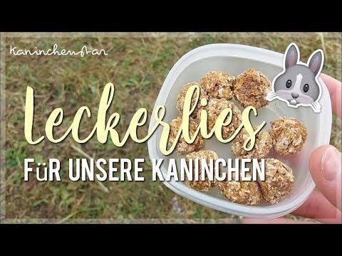 Unsere Leckerliesammlung 🍬🐇   Kaninchenstar