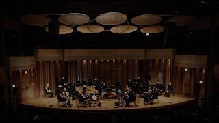 Steve Reich - Music for 18 Musicians (1974-76) // ECHOI Ensemble