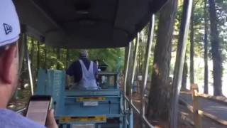 Essex County Turtle Back Zoo Train Ride