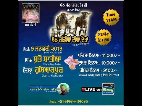 BURO BARIAN (Hoshiarpur ) ਬੈਲ ਗੱਡੀਆਂ ਦੀਆਂ ਦੌੜਾਂ / OX RACES - 2019 || LIVE STREAMED VIDEO HD ||