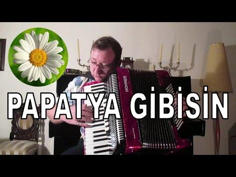 Papatya Gibisin Beyaz Ve ince Tango Akordion Akordeon Akordiyon