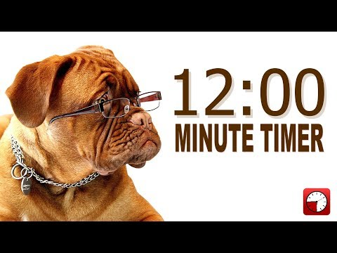 12 Minute Timer For PowerPoint And School - Alarm Sounds With Dog Bark