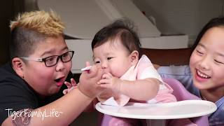 Best Solid Food For Baby | Funny Moments With Siblings | TigerFamilyLife~