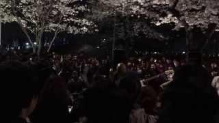 2015년 여의도 벚꽃축제 버스킹_분리수거-신나는 주말