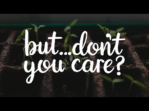 But... Don't you care?