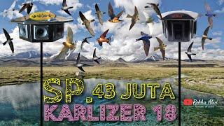 Download Lagu SP. 43 JUTA KARLIZER 18 | Original By Atax Walet | Suara Panggil Walet | Swiftlet Sound mp3