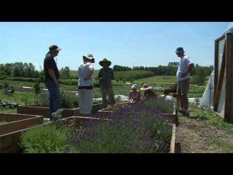 Organic Agriculture at Washington State University
