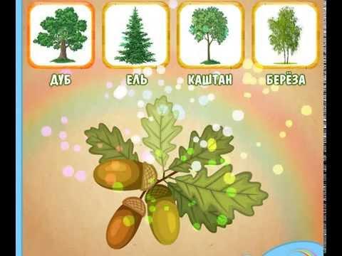 Развивающий мультфильм  для детей. Листья деревьев. Для малышей