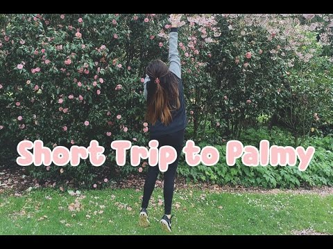 Trip to Palmerston North || Travel Diary 06