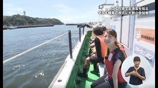 マダイ稚魚の放流体験~つくり育てる漁業