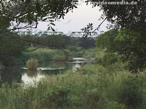 Kruger National Park, from Olifants River to Skukuza - South Africa Travel Channel