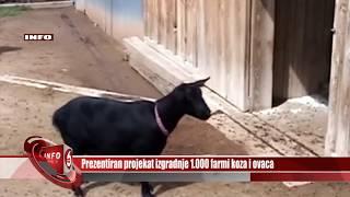 Prezentiran Projekat Izgradnje 1 000 Farmi Koza I Ovaca