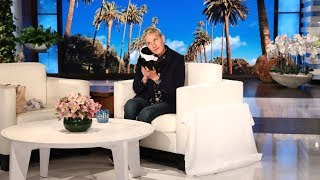 Ellen Debuts Her New Wildlife Fund Items