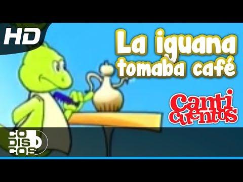 La Iguana Y El Perezoso, Canciones Infantiles - Canticuentos