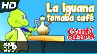 Canticuentos - La Iguana Y El Perezoso
