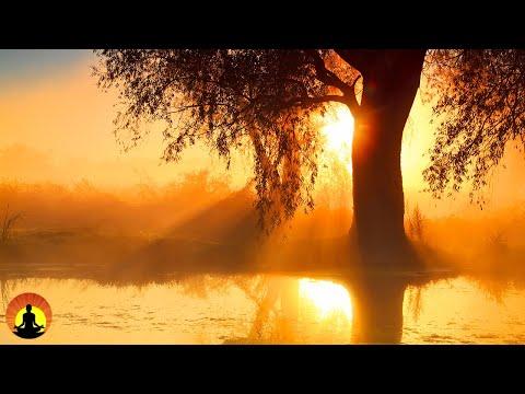 Download Yoga Zen Meditation Relaxation Mp3 Dan Mp4 2018 Efendi Mp3