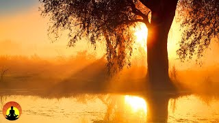 🔴 Relaxing Music 24/7, Meditation, Healing, Sleep Music, Calm Music, Zen, Relax, Sleep, Spa, Study