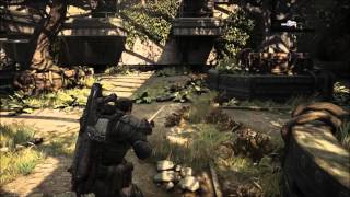 Gears Of War Ultimate Problems
