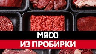 ИСКУССТВЕННОЕ МЯСО. Выращивание мяса из пробирки! Химические продукты