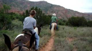 Tennessee Walking Horses on the trail at Palo Duro Canyon, Texas