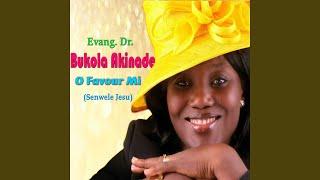 Download Senwele