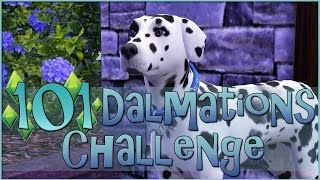 Sims 3 || 101 Dalmatians Challenge: Proposal At The Dog Park! - Episode #6