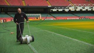 How Millennium Stadium groundsmen keep their pitch immaculate