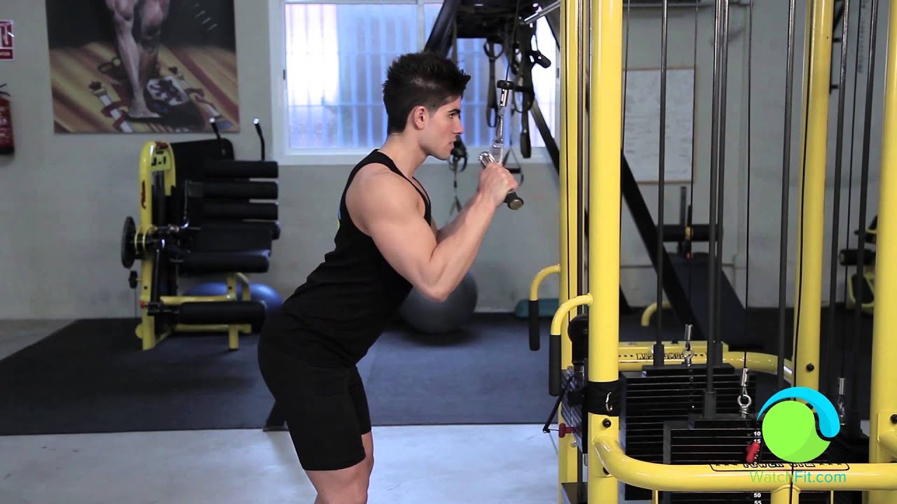 Tricep cable press down exercise, hypertrophy training to ...