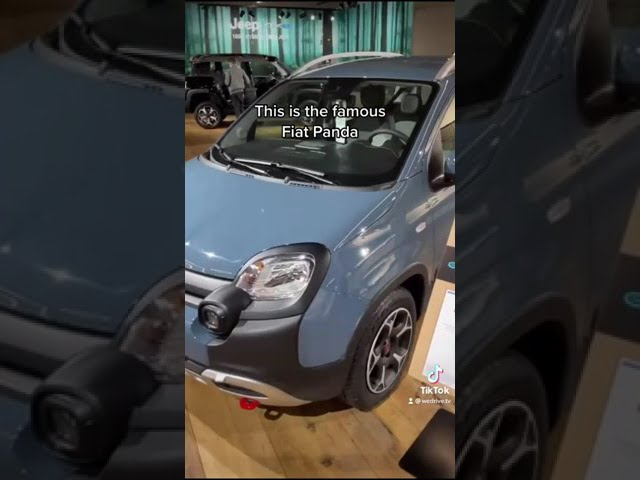 Nuova Fiat Panda 2022: vi piacerebbe così?