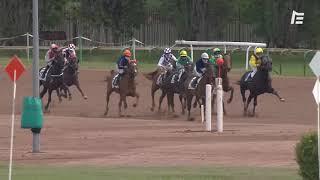 Vidéo de la course PMU PRIX DE CHATEL MONTAGNE