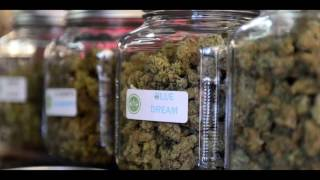 WEED DISPENSARIES PALM SPRINGS - CANNABIS DELIVERY SERVICE