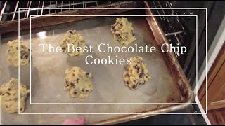 The Best Paradise Bakery Chocolate Chip Cookie