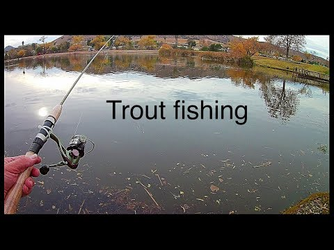 Trout Fishing At Santee Lakes Using Red Power Worms
